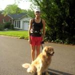 Dogs on the Run