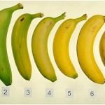 Let's Talk Bananas + Weekly Workouts