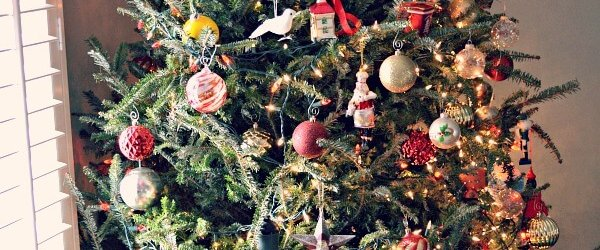 Christmas Decorations + Recent Eats + Our First Purple Carrot Delivery