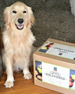 ALDI Delivered to my Doorstep {Review + Giveaway}