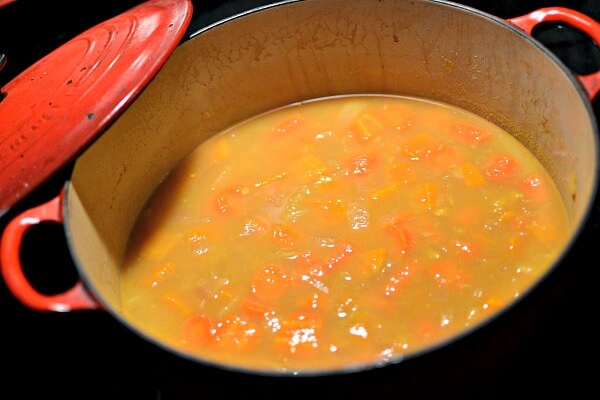 My Favorite Carrot Apple Butternut Ginger Soup