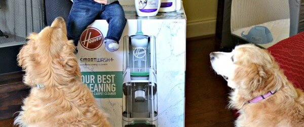 My New Hobby + Hoover Carpet Cleaner Giveaway